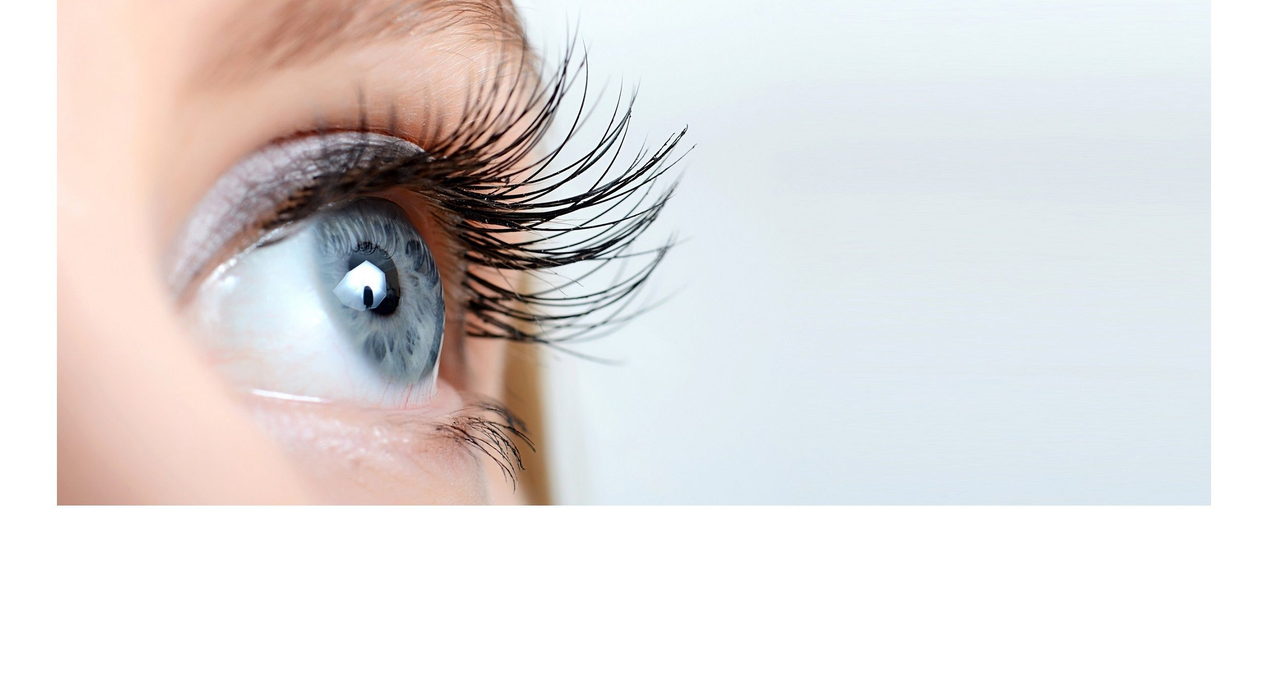 Nutralya®__BR__Prolonge & renforce votre vision du quotidien